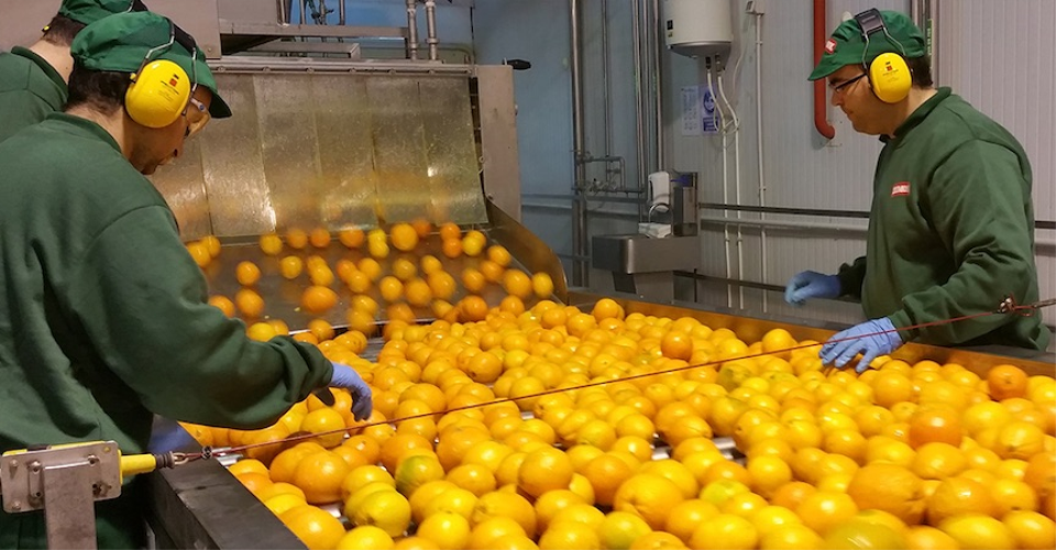 Installing lines and equipment for orange juice concentrates with JBT company